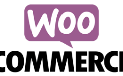 解决Woocommerce Secure checkout option被禁用报错